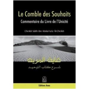 LE COMBLE DES SOUHAITS